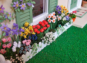 Взрослые растения для сада